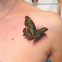 Тату бабочки на спине - значение и фото татуировки